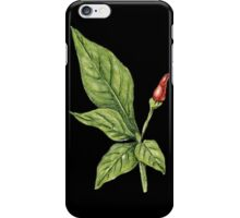 Chilly plant 2- red fruits iPhone Case/Skin