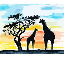 Giraffe Sunset Photographic Print