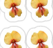 Yellow Pea Flower Sticker