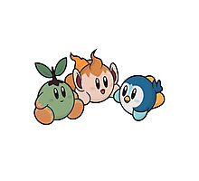 Kirby Pokémon Starters Photographic Print