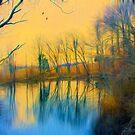 Mellow Yellow by John Rivera