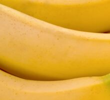 Bunch of Bananas Sticker
