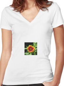 Gaillardia (Blanket Flower) Close-up  Women's Fitted V-Neck T-Shirt