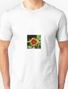 Gaillardia (Blanket Flower) Close-up  Unisex T-Shirt