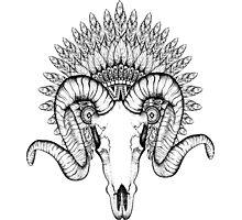 Goat Skull Photographic Print