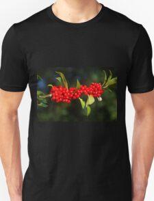 Herald Of A Harsh Winter T-Shirt