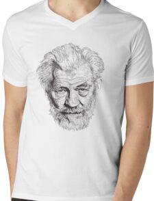 Ian Mens V-Neck T-Shirt