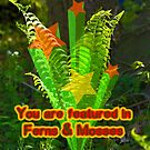 NOT FOR SALE - Featured Banner For Ferns & Mosses by MotherNature
