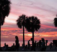 Visit Florida by alamarmie