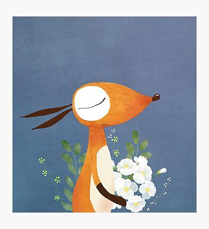 Fox and White Rose Photographic Print