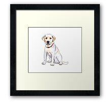 dog #3 Framed Print
