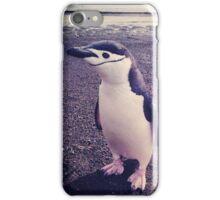 Bird Beach Bum iPhone Case/Skin