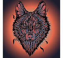 Clasic Wolf Color Paint Photographic Print