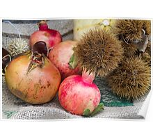 pomegranate and curly chestnut Poster