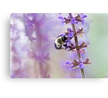 Purple and Bumble Canvas Print
