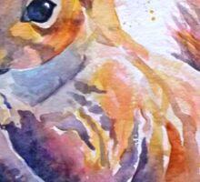 Squirrel 2 Sticker