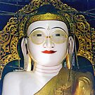 The Bespectacled Buddha of Shwemyetna Paya  by Ethna Gillespie