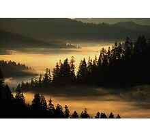 First Light at Indian Valley - Suislaw National Forest Photographic Print