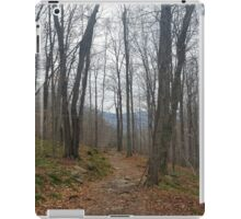 Trail Among the Catskill Mountains New York iPad Case/Skin