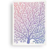 Fan Coral – Rose Quartz & Serenity Canvas Print