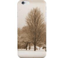 A Winter's Scene iPhone Case/Skin