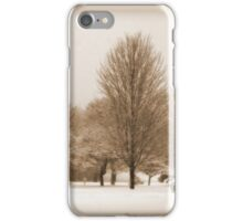 A Winter's Scene iPhone Case/Skin