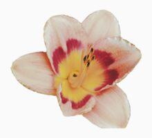 Orange Yellow Lily One Piece - Short Sleeve