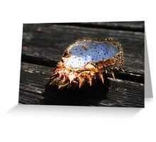 Spider from The Worm's Head Greeting Card