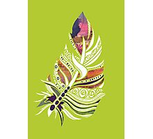 Lime Love! Fun and Funky, Fanciful Feather Photographic Print
