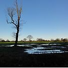 Floods in the Fields by neon-gobi
