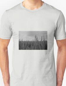 Corn Field T-Shirt