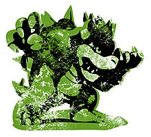 Bowser  -  Green Photographic Print