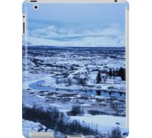 untitled xlii iPad Case/Skin