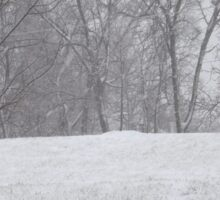 Snow landscape trees Sticker