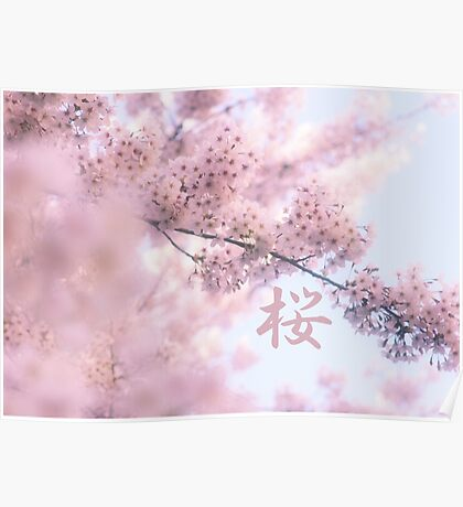 Lovely Light Pink Ethereal Glowing Cherry Blossoms Poster