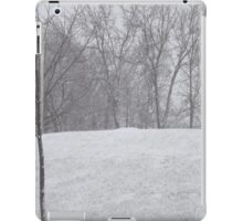 Snow landscape trees iPad Case/Skin