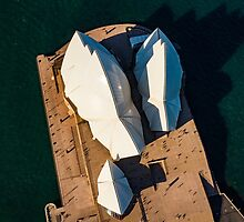Sydney Opera House from Above by Ana Andres-Arroyo
