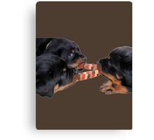 Loving and Sharing Rottweiler Puppies Canvas Print