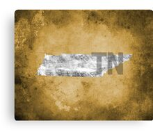 Tennessee Texture Canvas Print