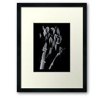 Bamboo negative Framed Print