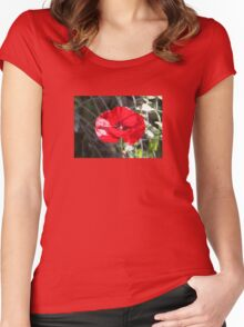 Vector Style Poppy With Natural Background  Women's Fitted Scoop T-Shirt