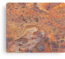 Rusty wall Canvas Print