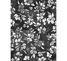 Blossoms on Charcoal Ink Photographic Print