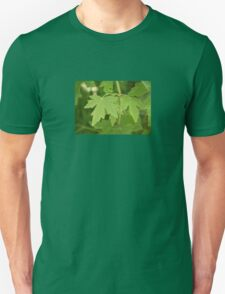 Amber Orientalis Leaves T-Shirt