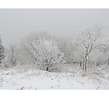 The Frozen Quantock Hills Photographic Print