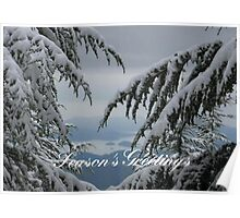 Pine Trees and Snow Season's Greetings From Fethiye Poster