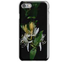 Honeysuckle iPhone Case/Skin