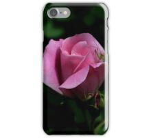 Rose Garden Visitor iPhone Case/Skin
