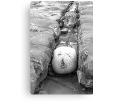 The squashed rock face Canvas Print