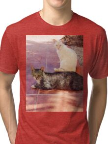 Kitty cat eyes. Tri-blend T-Shirt